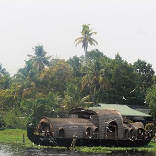Alleppey Backwaters Cruise Review