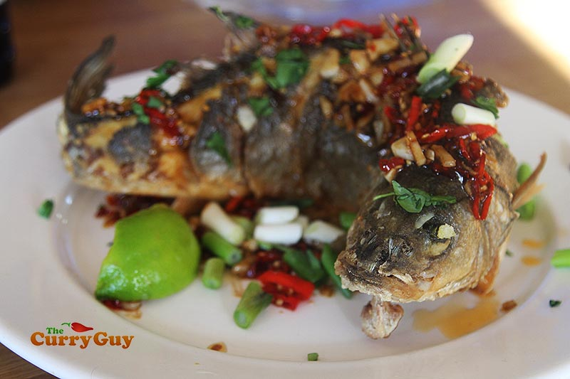 Fish fried with chilli and garlic